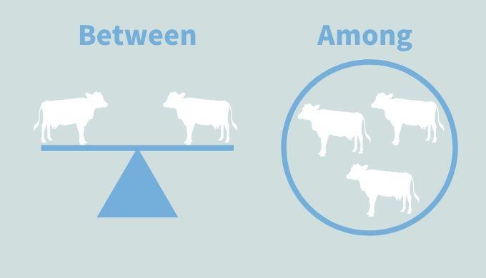 【イラストまるわかり】前置詞「Between」と「Among」の違いを徹底図解してみた