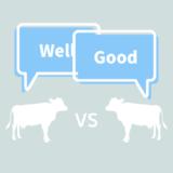 「Well」と「Good」の違いを文法的・意味的に解説してみた