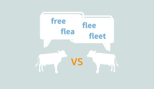 発音とスペルが紛らわしい英単語【free, flee, flea, fleet】の意味を明確に区別しよう