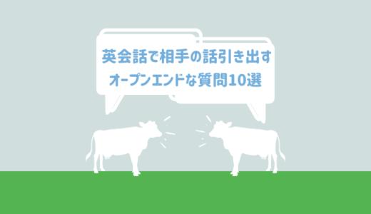 質問力はコミュニケーションを制す!英会話で相手の話を引き出す【オープン・エンド・クエスチョン10選】