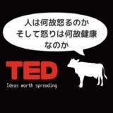 【日本語解説付き】TEDで感情について学ぶ動画「人は何故怒るのか、そして怒りは何故健康なのか」